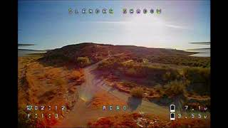 Slender Shadow FPV: Flying with Flies