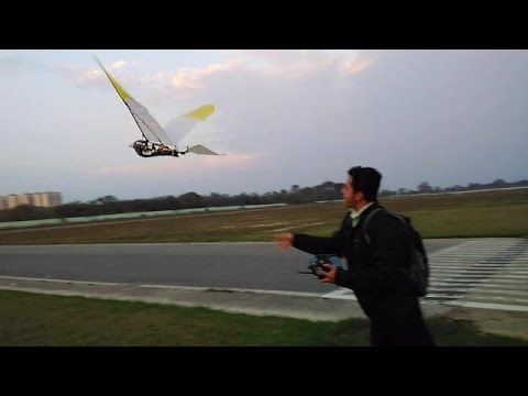 A beautiful FPV flight with an ornithopter