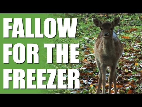 Fallow for the Freezer