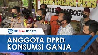 Asyik Konsumsi Ganja di Kamar Rumah, Oknum Anggota DPR di Grobogan Dibekuk Polisi
