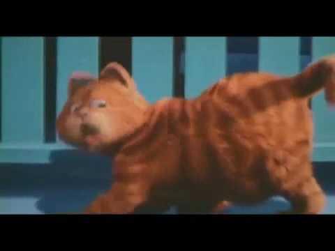 Мой кот поёт эй толстый