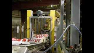 Hamer Fully Automated Bagging System, 50 lbs Salt Bags