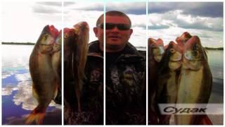 Рыбалка на темном озере ильмень