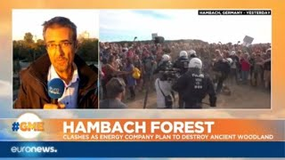 Hambach Forest: clashes as energy company plan to destroy ancient woodland