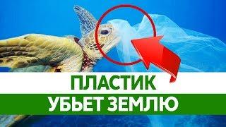 ПЛАСТИКОВЫЙ МУСОР. Экологическая катастрофа!
