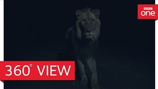 Africa at night 360° - Planet Earth II: Grasslands - BBC One