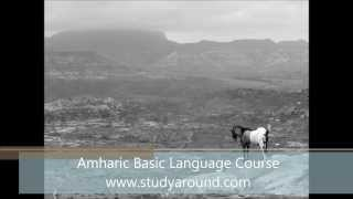 Amharic Basic Course - Volume 1 - Unit 01