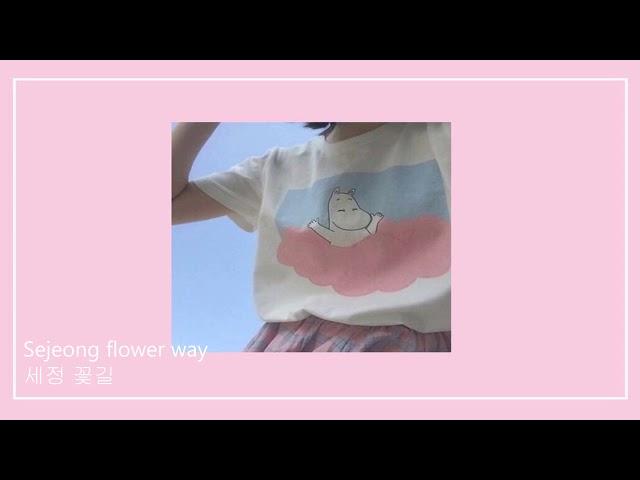 Falling in love / cute korean songs (relaxing/study)