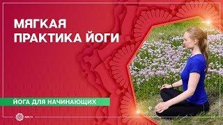 Хатха-йога. Мягкая практика. Марина Лысяк