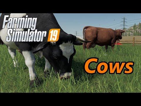 , title : 'Farming Simulator 19 Tutorial   Cows