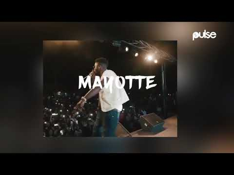 Davido Sells Out Concert In Mayotte   a Place He Had Never Heard of Before | Pulse TV News