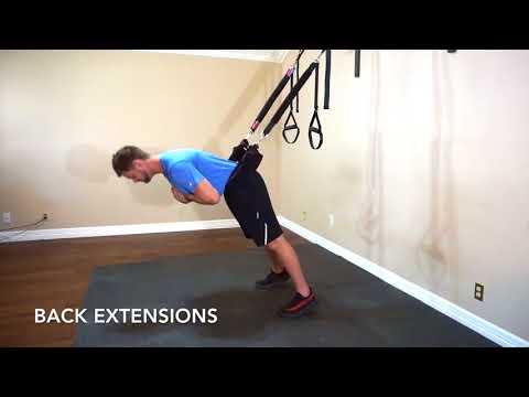 Back Workout 5