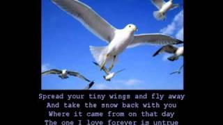 "Video thumbnail of ""Anne Murray - Snowbird (with lyrics)"""