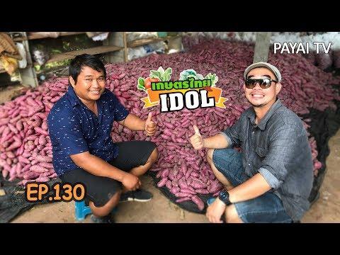 เกษตรไทยไอดอล   EP.130 ตอน มันหวาน