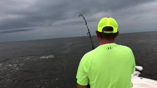 Tarpon Fishing: Pawleys Island and Georgetown South Carolina