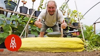 Download Youtube: This Gardener Regularly Grows 100-Pound Vegetables