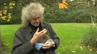 Brian May & Percy The Hedgehog - Community Channel Trailer 8 Dec 2011