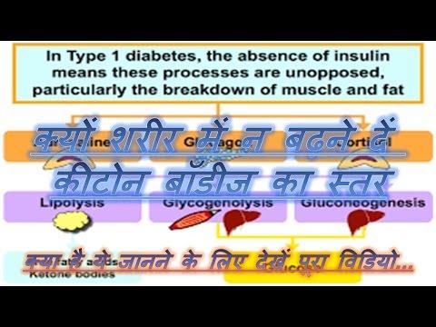 Wie Insulin in der Hitze zu halten