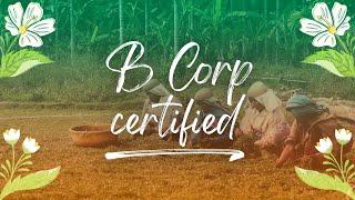 B Corp Certified   Pukka Herbs
