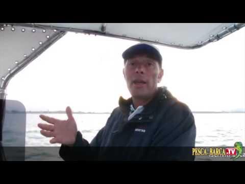 Video che pesca su Volga Yaroslavl
