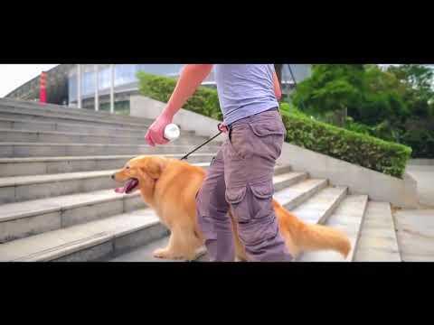 Wickedbone - erster interaktiver Hundeknochen