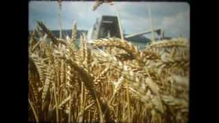 BUKOVA  - 1984