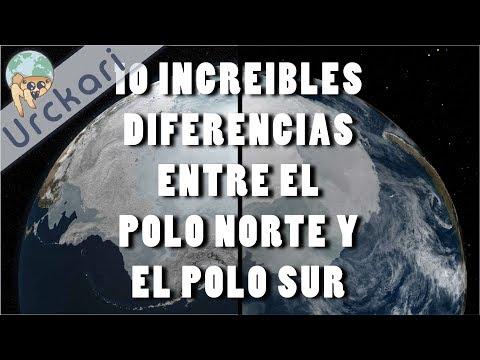 10 Increíbles Diferencias Entre el Polo Norte y el Polo Sur