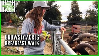 Browsey Acres | Ronda Rousey's Breakfast Walk