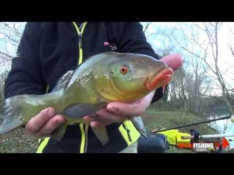 Berkley unimpalcatura per pesca