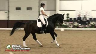 Judging a Dressage test, by Stephen Clarke, FEI Judge, 2014 The Dressage Convention