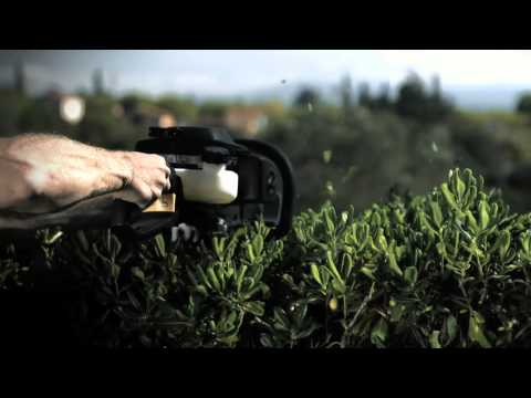 Hedge Trimming the Fast Way