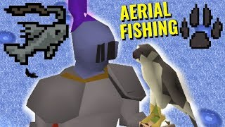 🦅🐟🎣 NEW AERIAL FISHING 🎣🐟🦅 (XP Rates & Quick Guide)