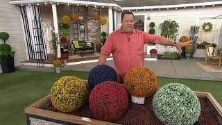"Wicker Park Set of (2) 11"", 13"", & 15"" Indoor/ Outdoor Faux Spheres on QVC"