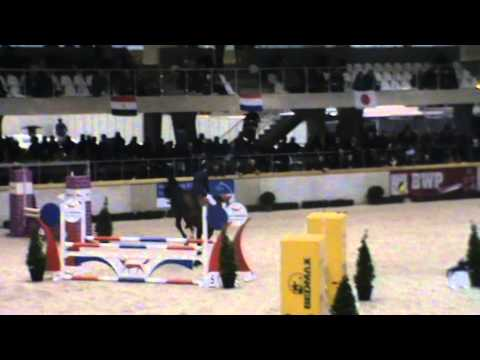 Stallion Competition_Sentower park