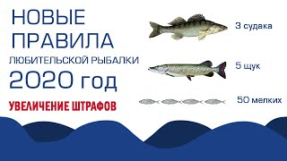 Что брать в походы на рыбалку 2020