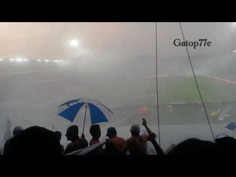 """""""No voy a tomar la ruta de los sacrificios - MILLONARIOS"""" Barra: Blue Rain • Club: Millonarios"""