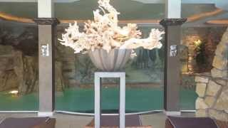 preview picture of video 'Inside SPA - Poollandschaft'