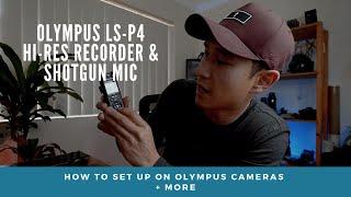 OLYMPUS LS-P4 | HI Res Audio Recorder & Shotgun Mic SETUP on Olympus Cameras