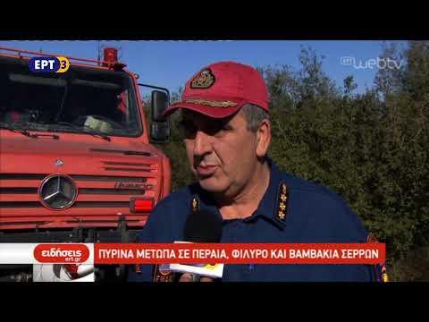 Φωτιές ξέσπασαν χθες σε Φίλυρο, Περαία και Βαμβακιά Σερρών | 25/10/2018 | ΕΡΤ