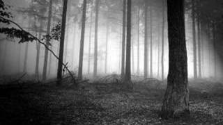 Satyricon - Into The Mighty Forest