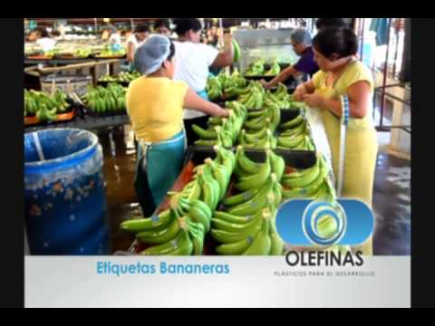 Etiquetas para Frutas (Banano)