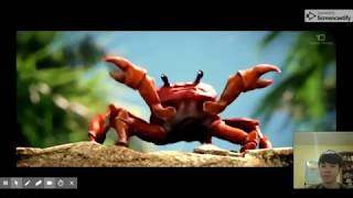 Crab Rave For 10 mins (Not 10 Hours)
