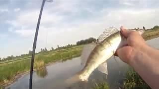Вёкса река рыбалка