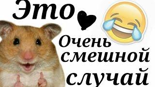Очень смешной случай ))))))))))