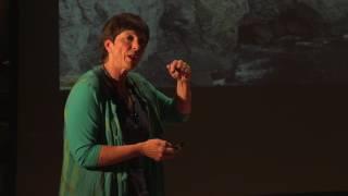 Thinking Global, Acting Local | Jane Davidson | TEDxSwansea