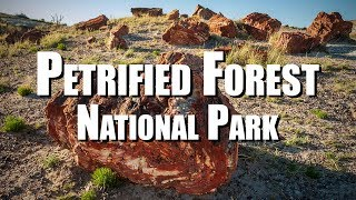 Petrified Forest National Park (Arizona)