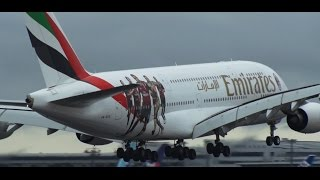 ✈初飛来ACミラン5選手を描いた特別塗装機エミレーツ航空EmiratesLanding!!NaritaRWY16R!成田空港さくらの山公園