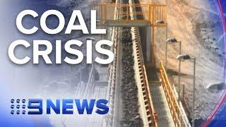 China pauses imports of Australian coal | Nine News Australia