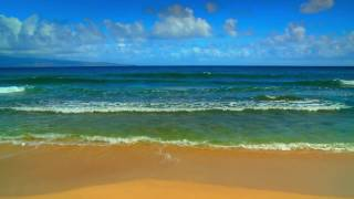 HD ベスト ハワイ ビーチ 1 波 DVD + 海の音 - HD BEST HAWAII BEACHES 1 WAVES DVD + ocean sounds