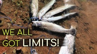 Ridiculous Amount Of TROUT- WE ALL GOT LIMITS!!  | Lake Jennings
